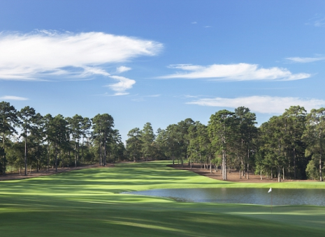 Bluejack National